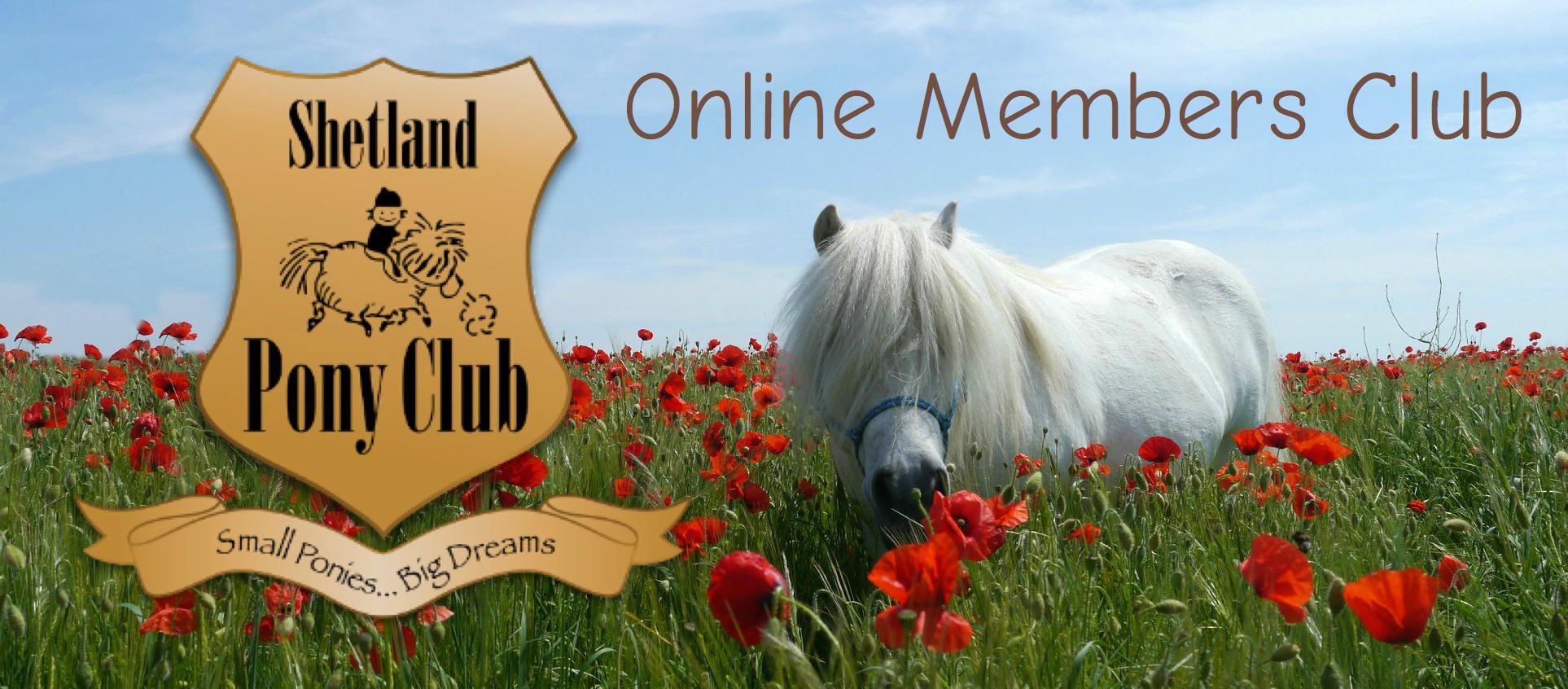 Shetland Pony Club Online
